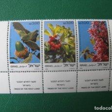 Sellos: ISRAEL, 1961, FLORA, ARBOLES DE TIERRA SANTA, YVERT 813/15. Lote 245093215