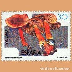 Sellos: USADO - EDIFIL 3342 - SPAIN 1995 MICOLOGIA /M. Lote 206997083