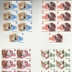 Sellos: PERROS DE RAZA ESPAÑOLA* - 4 BLOQUES DE 6 SELLOS Y 4 SUELTOS - EDIFIL 2711-14 - AÑO 1983 - LUJO. Lote 143980046
