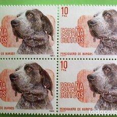Selos: ESPAÑA. 2711 PERROS DE RAZA: PERDIGUERO DE BURGOS, EN BLOQUE DE CUATRO. 1983. SELLOS NUEVOS Y NUMERA. Lote 158709240