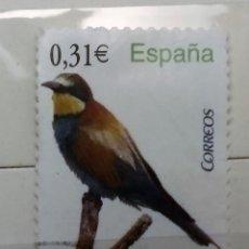 Sellos: ESPAÑA 2008 USADO FLORA Y FAUNA: ABEJARRUCO 0,31 €. Lote 177945465