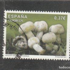 Sellos: ESPAÑA 2013 -EDIFIL NRO. 4822 - USADO. Lote 179545042