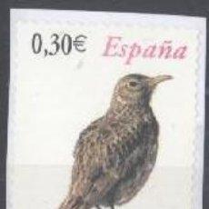 Selos: ESPAÑA - AÑO 2007 - EDIFIL 4305 - FAUNA - ALONDRA RICOTÍ - USADO. Lote 205695612