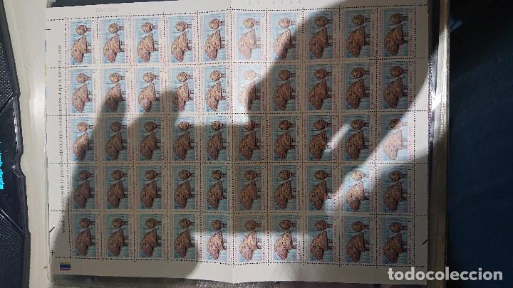 PLIEGO 50 SELLOS DE 17 PESETAS 1993 Nº 3244 MICOLOGIA ( SETAS ) , NUEVOS . LEER DESCRIPCION (Sellos - España - Juan Carlos I - Desde 1.986 a 1.999 - Nuevos)