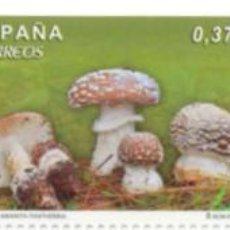 Sellos: ESPAÑA 2013 (4822-4824) SETAS (NUEVO). Lote 222275598