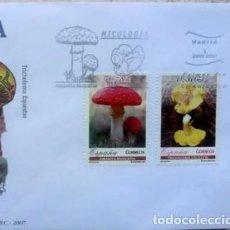 Sellos: SOBRES ESPAÑA 2007 - FOTO 556 - MICROLOGIA. Lote 235304195