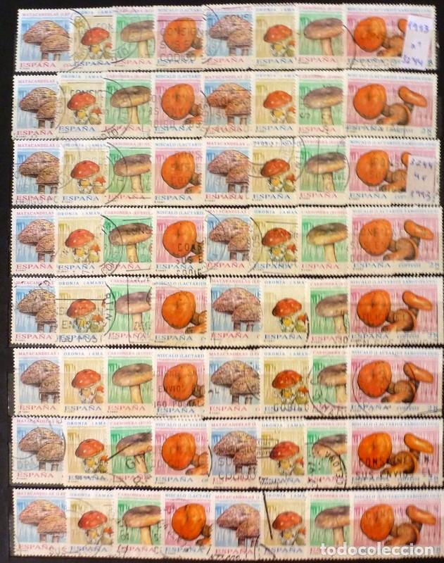 SELLOS ESPAÑA 1993 - FOTO 629 - LOTE 358 - Nº 3244 , USADO (Sellos - España - Juan Carlos I - Desde 1.986 a 1.999 - Usados)