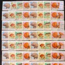 Sellos: SELLOS ESPAÑA 1993 - FOTO 629 - LOTE 358 - Nº 3244 , USADO. Lote 264197508