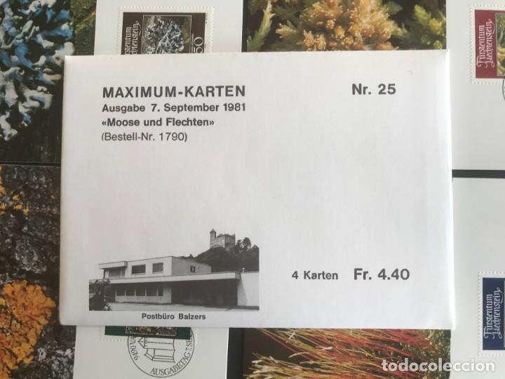 Sellos: Liechtenstein 1981 Tarjetas serie completa - Foto 2 - 216615883