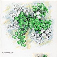 Sellos: [C0331] LIECHTENSTEIN 1992. MAXICARD HELECHOS. 2,50 FR (M). Lote 268907644