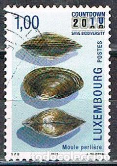 LUXEMBURGO Nº 1850, PROTECCIÓN DE LA BIODIVERSIDAD, OSTRA PERLIFERA, USADO (Sellos - Extranjero - Europa - Luxemburgo)
