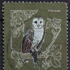 Sellos: MALTA 1981 • YT 612 USADO • TYTO ALBA. Lote 132874982