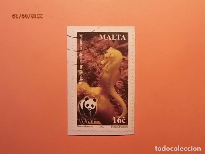 MALTA - ANIMALES - WWF - CABALLITO DE MAR - HIPPOCAMPUS. (Sellos - Extranjero - Europa - Malta)