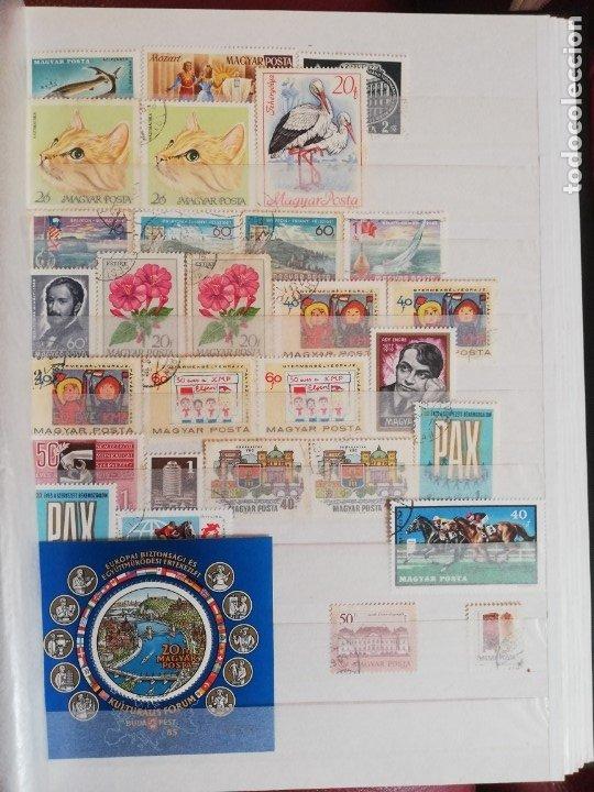 Sellos: Sellos antiguos. Gran Colección de Sellos (Más de 15000) Con todas las fotos de la colección. - Foto 134 - 174471534