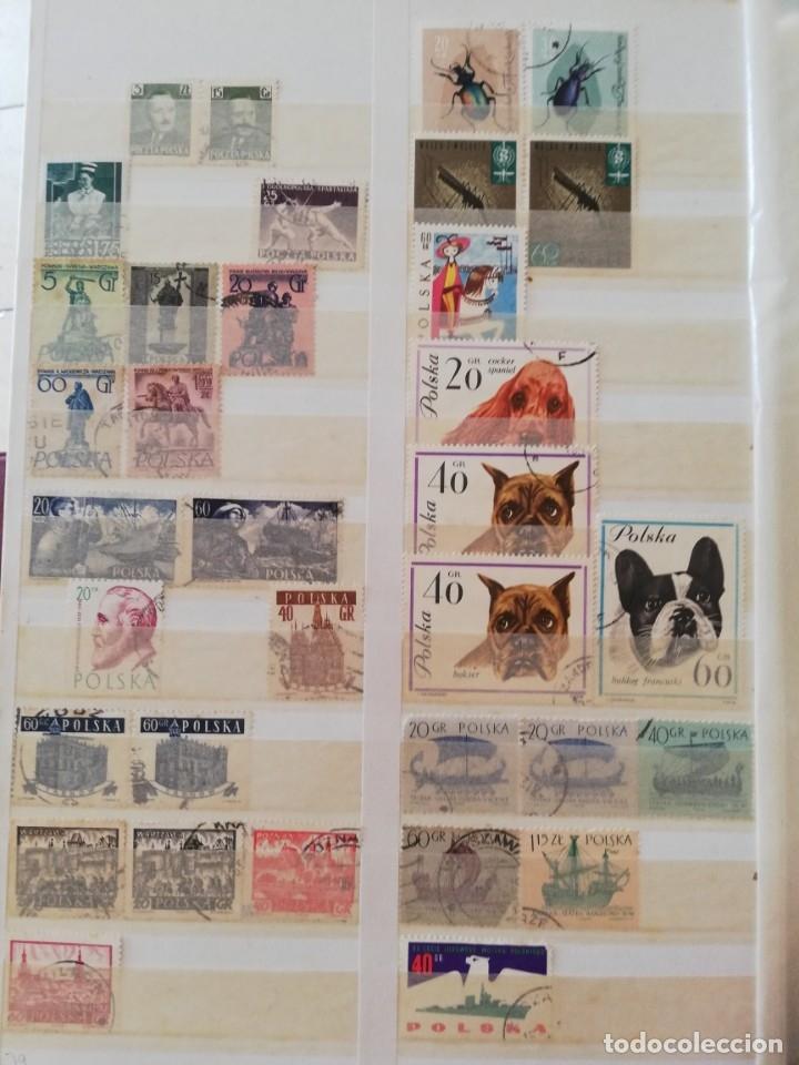 Sellos: Sellos antiguos. Gran Colección de Sellos (Más de 15000) Con todas las fotos de la colección. - Foto 200 - 174471534