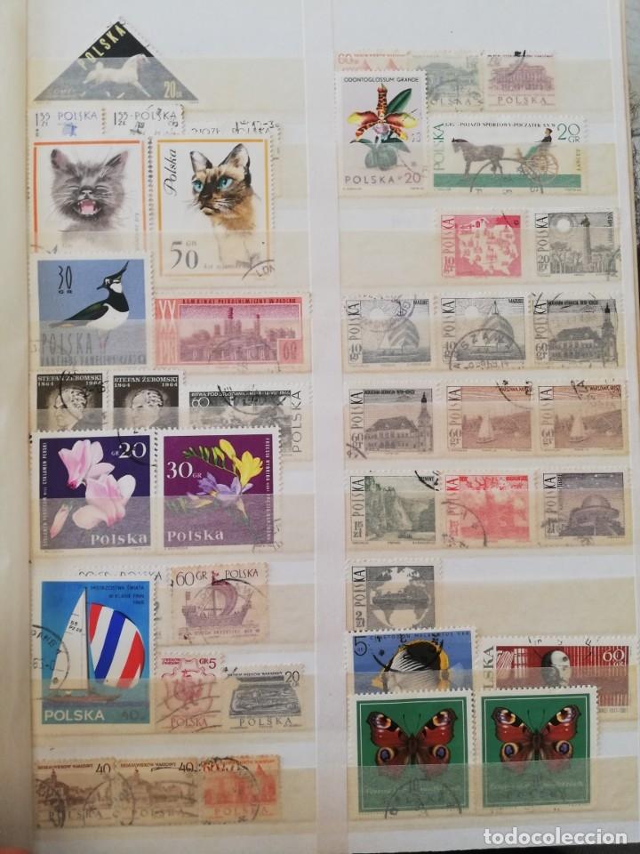 Sellos: Sellos antiguos. Gran Colección de Sellos (Más de 15000) Con todas las fotos de la colección. - Foto 201 - 174471534
