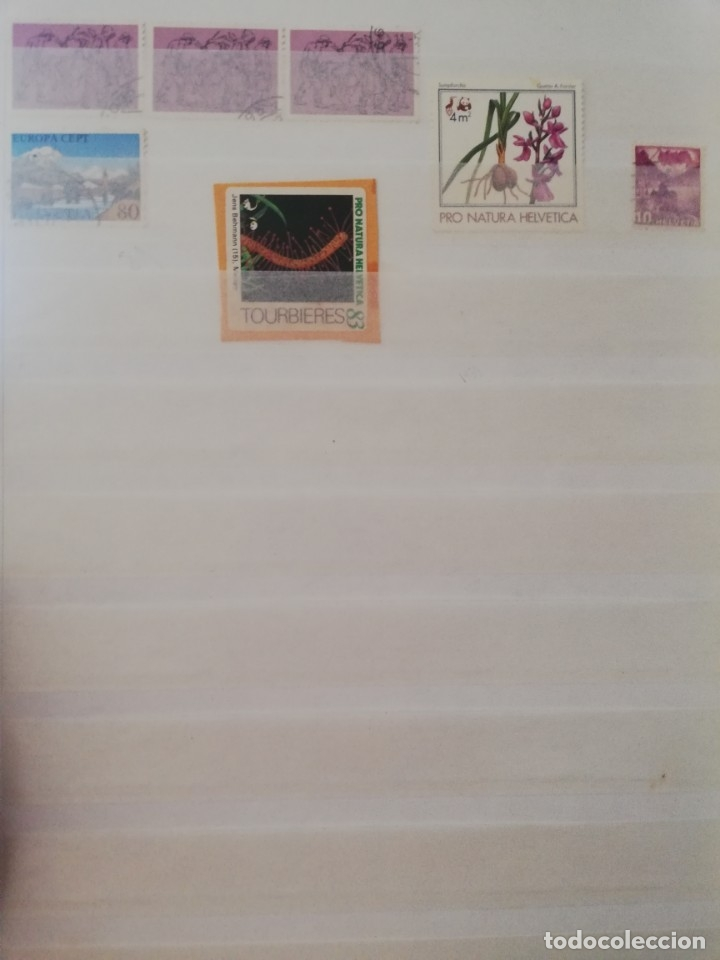 Sellos: Sellos antiguos. Gran Colección de Sellos (Más de 15000) Con todas las fotos de la colección. - Foto 236 - 174471534