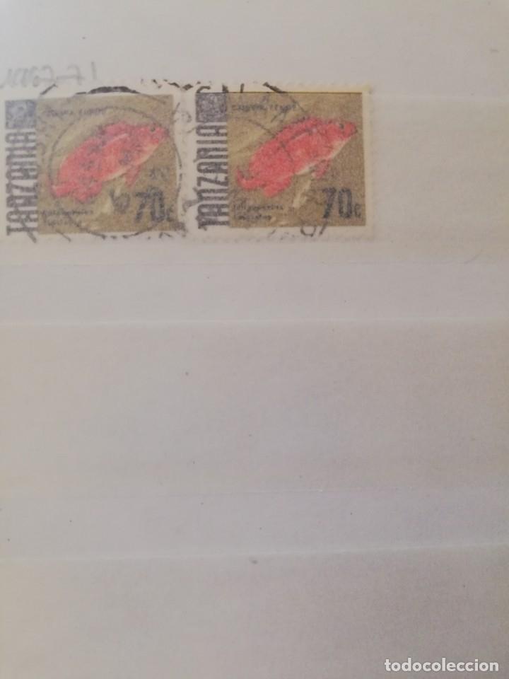 Sellos: Sellos antiguos. Gran Colección de Sellos (Más de 15000) Con todas las fotos de la colección. - Foto 242 - 174471534