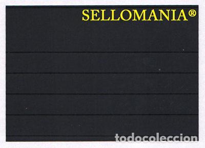 25 FICHAS PROTECTORAS Y CLASIFICADORAS 5 BANDAS MEDIDAS 210 X 148 MM LEUCHTTURM (Sellos - Material Filatélico - Otros)