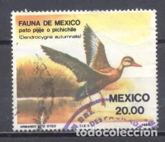 MEXICO 1984, USADO,PÁJAROS (Sellos - Extranjero - América - México)