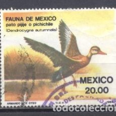 Sellos: MEXICO 1984, USADO,PÁJAROS. Lote 238305105