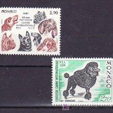 Sellos: MONACO 1575/6 SIN CHARNELA, FAUNA, PERROS, 50º EXPOSICION INTERNACIONAL CANINA, . Lote 11427410