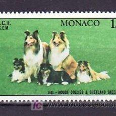Sellos: MONACO 1280 SIN CHARNELA, FAUNA, PERROS, EXPOSICION CANINA INTERNACIONAL EN MONTE-CARLO, . Lote 11461060