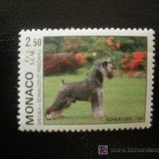 Timbres: MONACO 1991 IVERT 1760 *** EXPOSICIÓN CANINA INTERNACIONAL DE MONTECARLO - PERROS - FAUNA. Lote 18196065