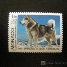 Sellos: MONACO 1983 IVERT 1367 *** EXPOSICIÓN CANINA INTERNACIONAL MONTECARLO - PERROS - FAUNA. Lote 18196185