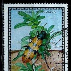 Sellos: MONGOLIA SCOTT:668-(1972) (ESCARABAJO AMPOLLA:(MYLABRIS MONGOLICA) (USADO). Lote 148079950