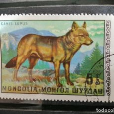 Timbres: MONGOLIA - 5 CANIS LUPUS - LOBO - FAUNA. Lote 189944907