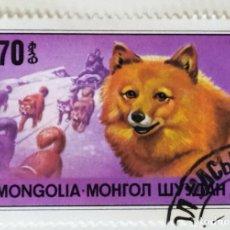 Sellos: SELLO DE MONGOLIA 70 - 1978 - PERROS - USADO SIN SEÑAL DE FIJASELLOS. Lote 251688325