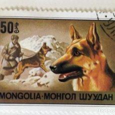 Sellos: SELLO DE MONGOLIA 50 - 1978 - PERROS - USADO SIN SEÑAL DE FIJASELLOS. Lote 251688385