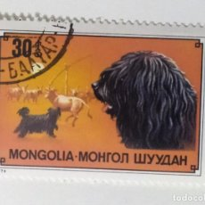 Sellos: SELLO DE MONGOLIA 30 M - 1978 - PERROS - USADO SIN SEÑAL DE FIJASELLOS. Lote 270095223