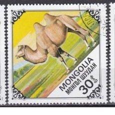 Sellos: LOTE DE SELLOS DE MONGOLIA - CAMELLOS - ANIMALES - DROMEDARIOS - (ENVIO COMBINADO COMPRA MAS). Lote 287738358