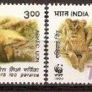 Sellos: WWF INDIA 1999. Lote 27268756
