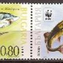 Sellos: WWF BULGARIA 2004. Lote 27268762