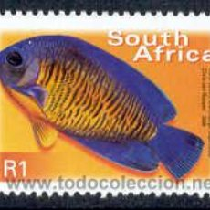 Sellos: SUDAFRICA 2000. SERIE BASICA. PECES. PEZ CORAL ENANO (CENTROPYGE BISPINOSUS). Lote 9724365