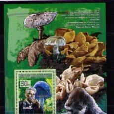Sellos: REPUBLICA DE GUINEA 2008 - SETAS - CHAMPIGNONS - MUSHROOMS - 1 BLOCK. Lote 41630719
