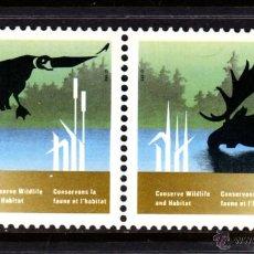 Sellos: CANADA 1046/47** - AÑO 1988 - PROTECCION DE LA FAUNA Y DE LA NATURALEZA - FAUNA - AVES. Lote 50489323