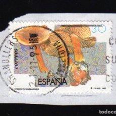 Sellos: SELLO USADO SOBRE PAPEL: ESPAÑA EDIFIL Nº 3342 (MICOLOGÍA: CORTINARIO CANELO [DERMOCYBE CINNAMOMEA]). Lote 104294079
