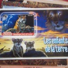 Sellos: HOJA DE BLOQUE LEONES Y TIGRES 1200 FR 2005 REP.CENTRAFRICAINE MUEVOS CON GOMA. Lote 116967135