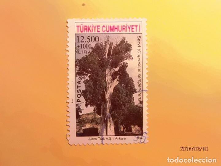 TURQUIA 1994 - ÁRBOLES - CUPRESUS SEMPERVIRENS - CIPRES. (Sellos - Temáticas - Naturaleza)