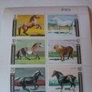 Sellos: HB R. BULGARIA NUEVOS/1991/CABALLOS/MAMIFEROS/PONY/EQUINO/ARABE/COLD/VERTEBRADOS/FAUNA/ANIMALES. Lote 162519932