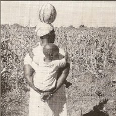Sellos: BOTSWANA & POSTAL, COSECHA, THOBO CON MOZAMBIQUE STAMP 1979 (8). Lote 177548293