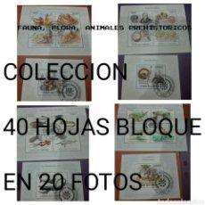 Sellos: HB (40) U.I. COMORAS(COMORES) MTDOS/2009/COLECCION/FAUNA/FLORA/PREHISTORIA/20 FOTOS/DINOSAURIOS/NATU. Lote 232758280