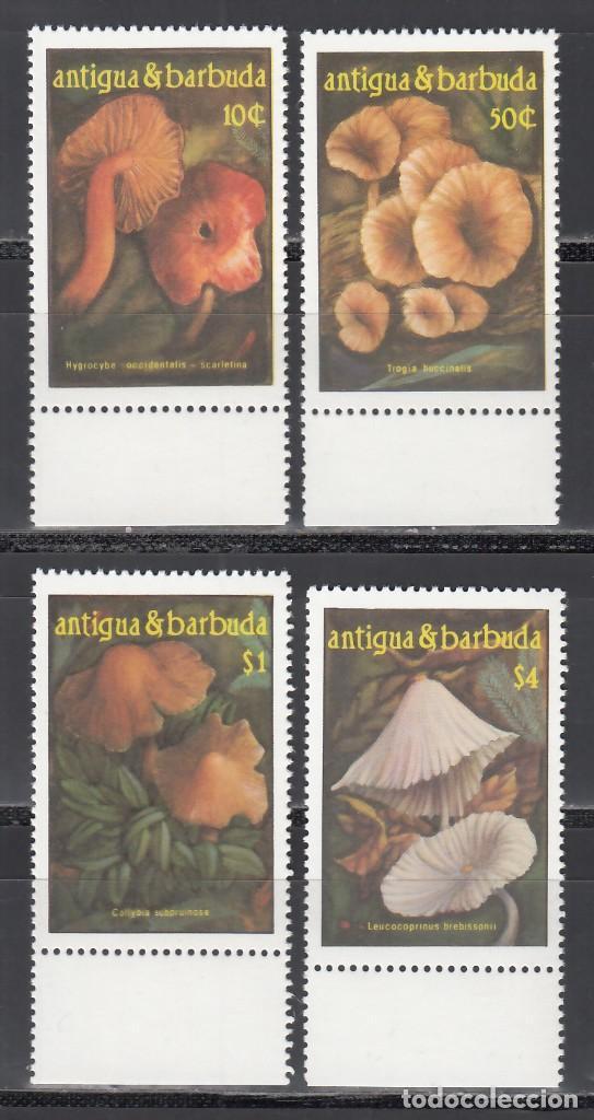 ANTIGUA & BARBUDA. 1986 YVERT Nº 931 / 934 /**/, SETAS / HONGOS. (Sellos - Temáticas - Naturaleza)