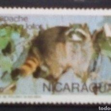Sellos: NICARAGUA MAPACHE SELLO NUEVO. Lote 186341652