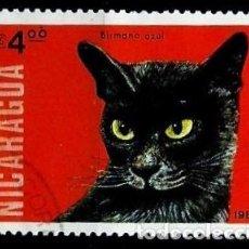 Sellos: NICARAGUA SCOTT: 1332-(1984) (GATO BIRMANO AZUL) USADO. Lote 191399242