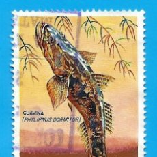 Francobolli: NICARAGUA. 1969. PECES. GUAVINA. Lote 210223426